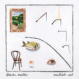 Mutable Set - Blake Mills.jpg