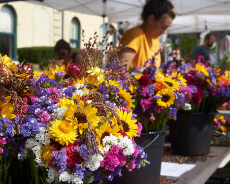 WHF Cedarburg farmers market.jpg