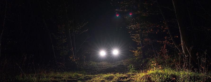 TimbersCarheadlights2.jpg