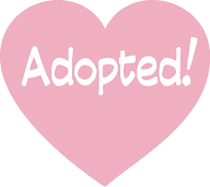 adopted_2_edited_edited.png