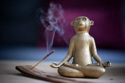 Meditation For Over-Thinkers Workshop