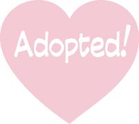 adopted_2_edited_edited_edited.png