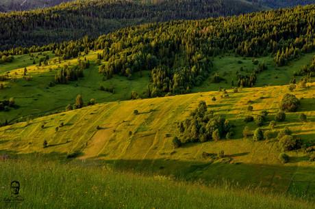 Nad Osturňou - Spišská Magura