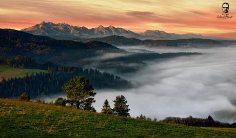 Lesnícke sedlo - Spišská Magura