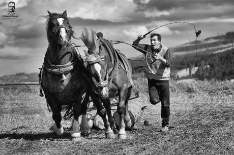 Furmanské preteky - Vikartovce