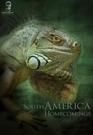Južná Amerika 2016