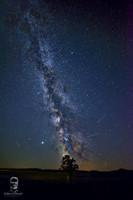Mliečna dráha - Šuňava