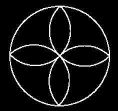 Petals in Circle.jpg
