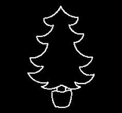 Tree in Pot.jpg