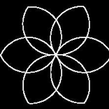 6 Petal Flower.jpg