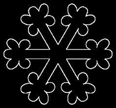 Snowflake 1.jpg