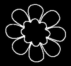 Funky Flower.jpg