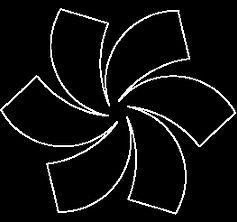 Pinwheel Spin.jpg