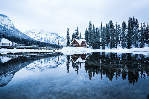 Frozen Reflection