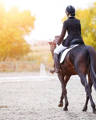 dressyrekipage_häst.jpg