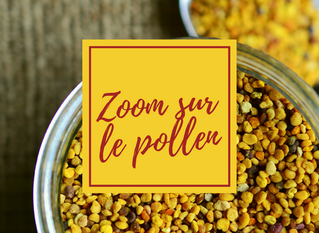 Le pollen : Ce super-aliment