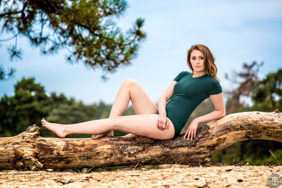 In a forest
