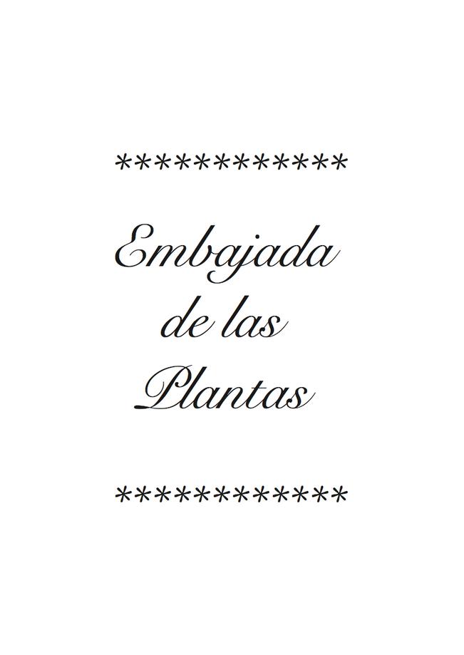 Proyecto 'Plantas medicinales para el cuerpo social'