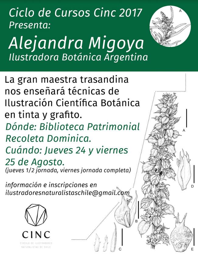 Taller de Ilustración Científica Botánica con la profesora Argentina Alejandra Migoya.