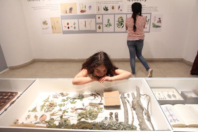 Exposición Paisaje y ruralidad en Centex, Valparaiso