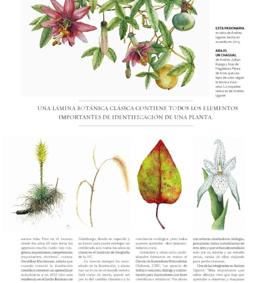 Articulo Ilustrar La Ciencia