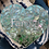 Thumbnail: Handmade Mosaic