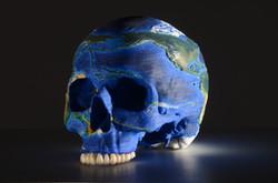 Crâne - Résine - 20x18x18cm