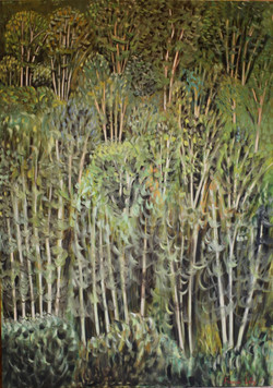 14-Grands arbres verts-162 x 114cm-vertical (Large)