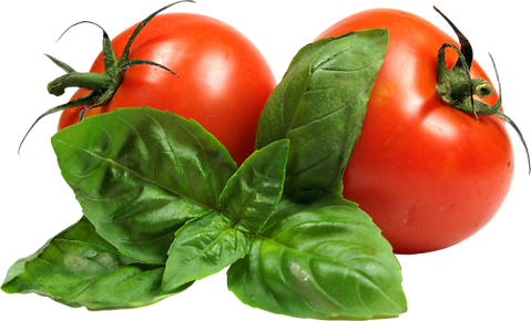 Tomato-Download-PNG.png