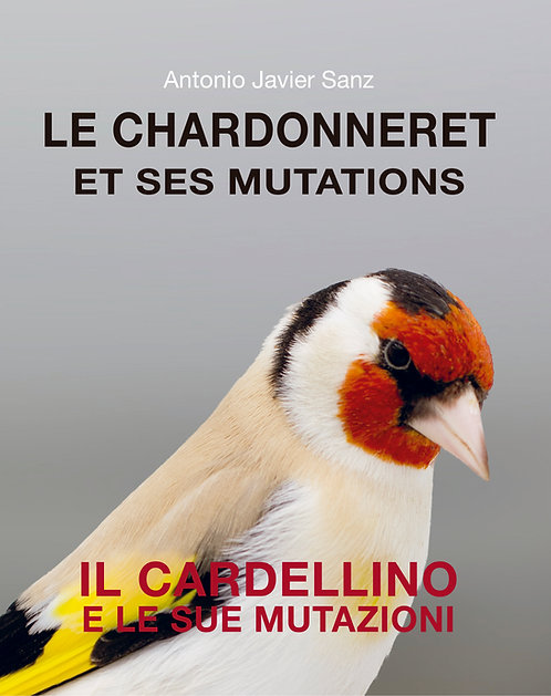 LE CHARDONNERET ET SES MUTATIONS - IL CARDELLINO E LE SUE MUTAZIONI
