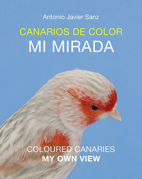 COLOUR CANARIES, MY OWN VIEW