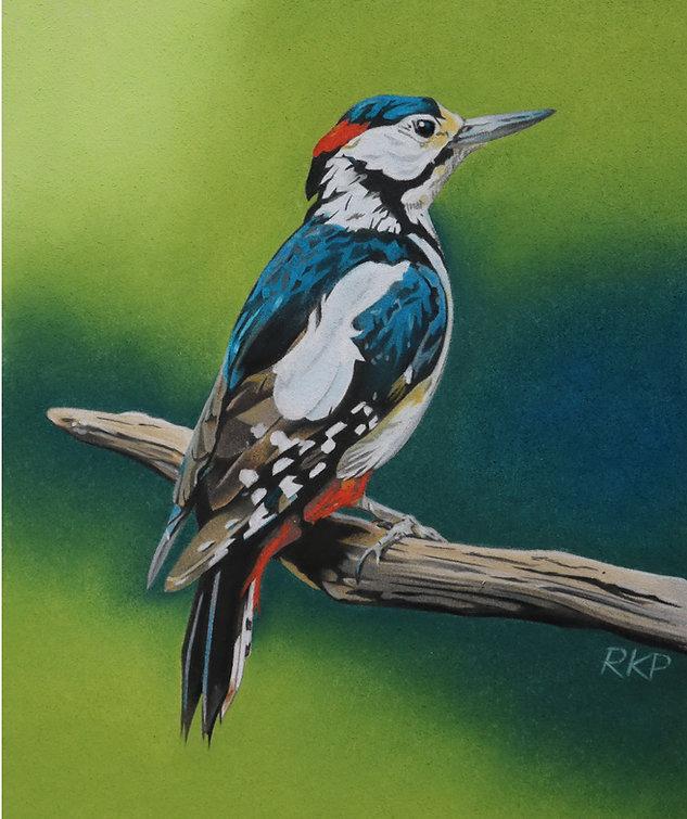 Great Spotted Woodpecker - Richard K Pot