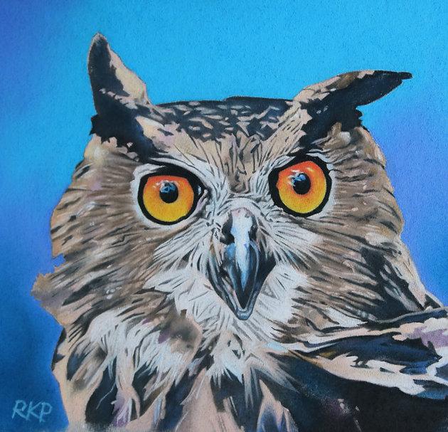 Owl - RKP.jpg