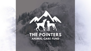The Pointers Animal Care Fund