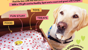 Healthy Spot's Sponsorship of Assistance Dog 'Cirque'