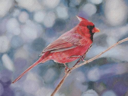 Cardinal Numbered Print