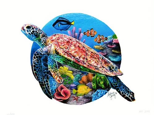 Sea Turtle #3 Numbered Print