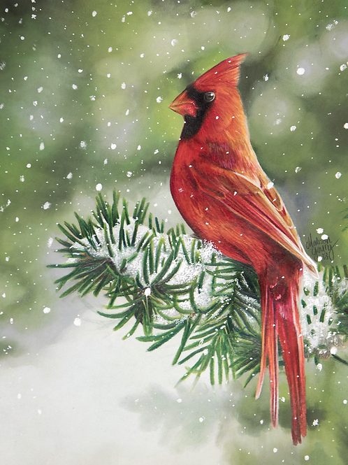 Cardinal in the Snow Numbered Print