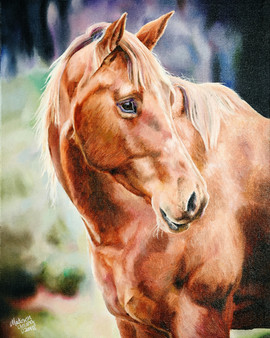 Horse Retouch Final_edited.jpg