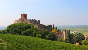 Summer of Soave!