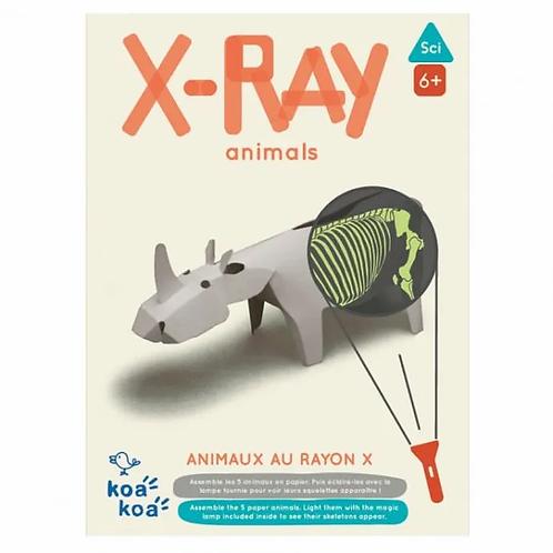 X-ray -KOA KOA