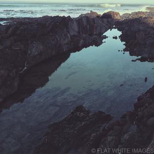 Sea-Real.