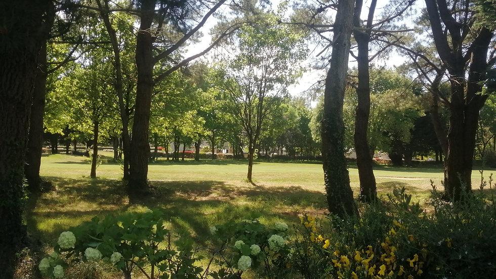 Belle villa au bord du golf de La Baule