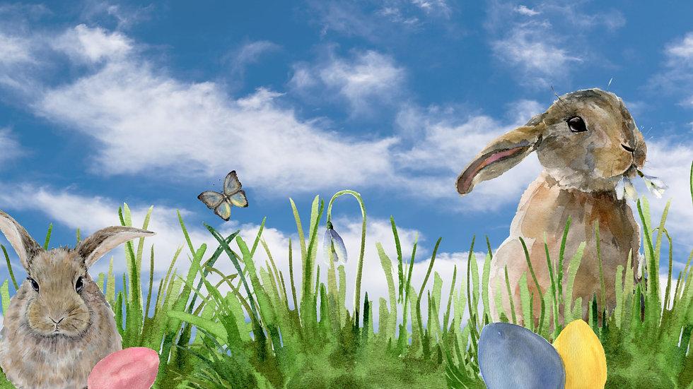 Spring bunnies in the fresh air