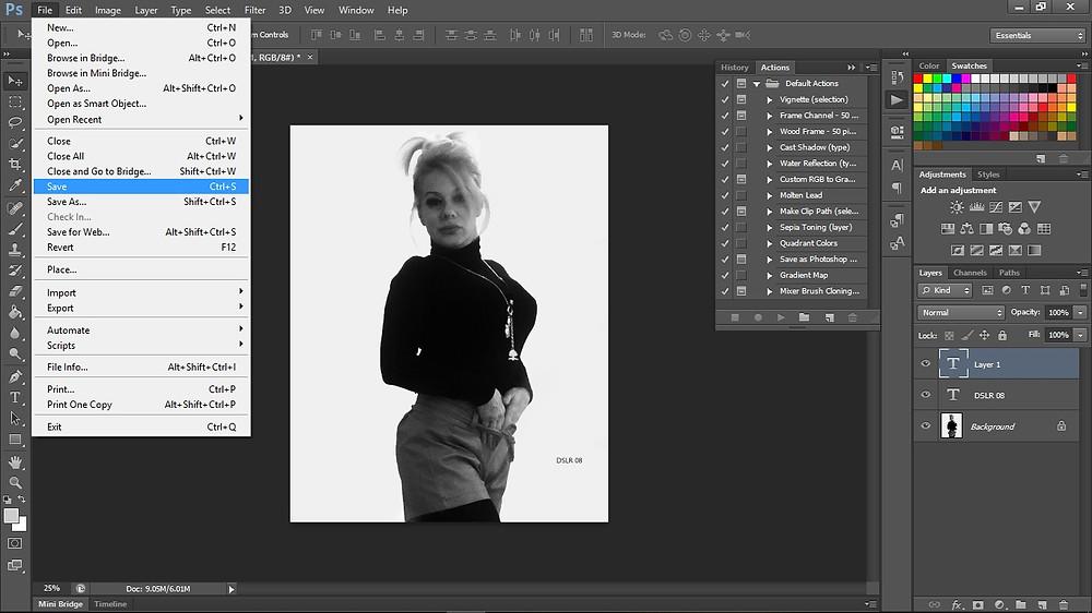 Photoshop work in progress; screen shot 2019 Jan.