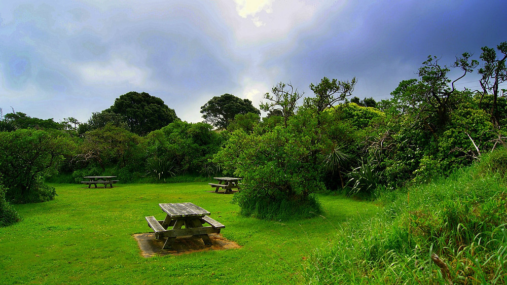 Wind, Wather,Earth and Light _ Queen Elisabetth Park New Zealand by danIzvernariu 2012 Spring time South Emisphere