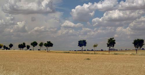 Spanish paisage by Dan Izvernariu