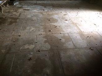 St Gonvel 21 sol ciment.JPG