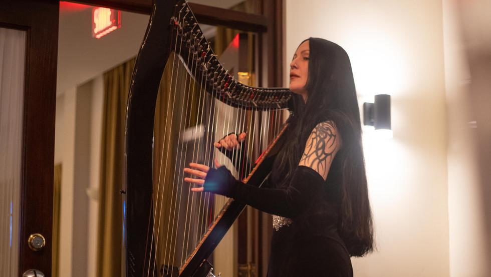 Kaleido 2020 - Harpiste.jpg