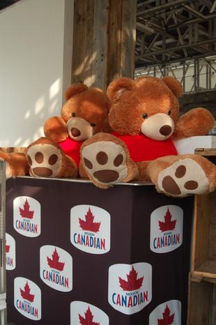 Molson Canadian - Oursons.JPG